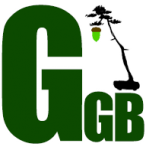 ggb avatar.png