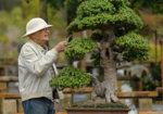 James-J-Smith-With-Bonsai.jpg