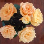 mothers day roses.jpg