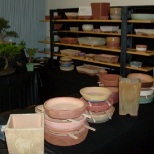My stand at 2009 'Joy of Bonsai' show