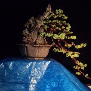 update juniper cascade with stone